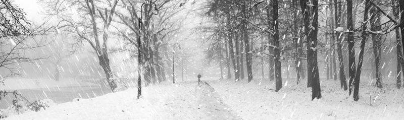 man walking in winter storm